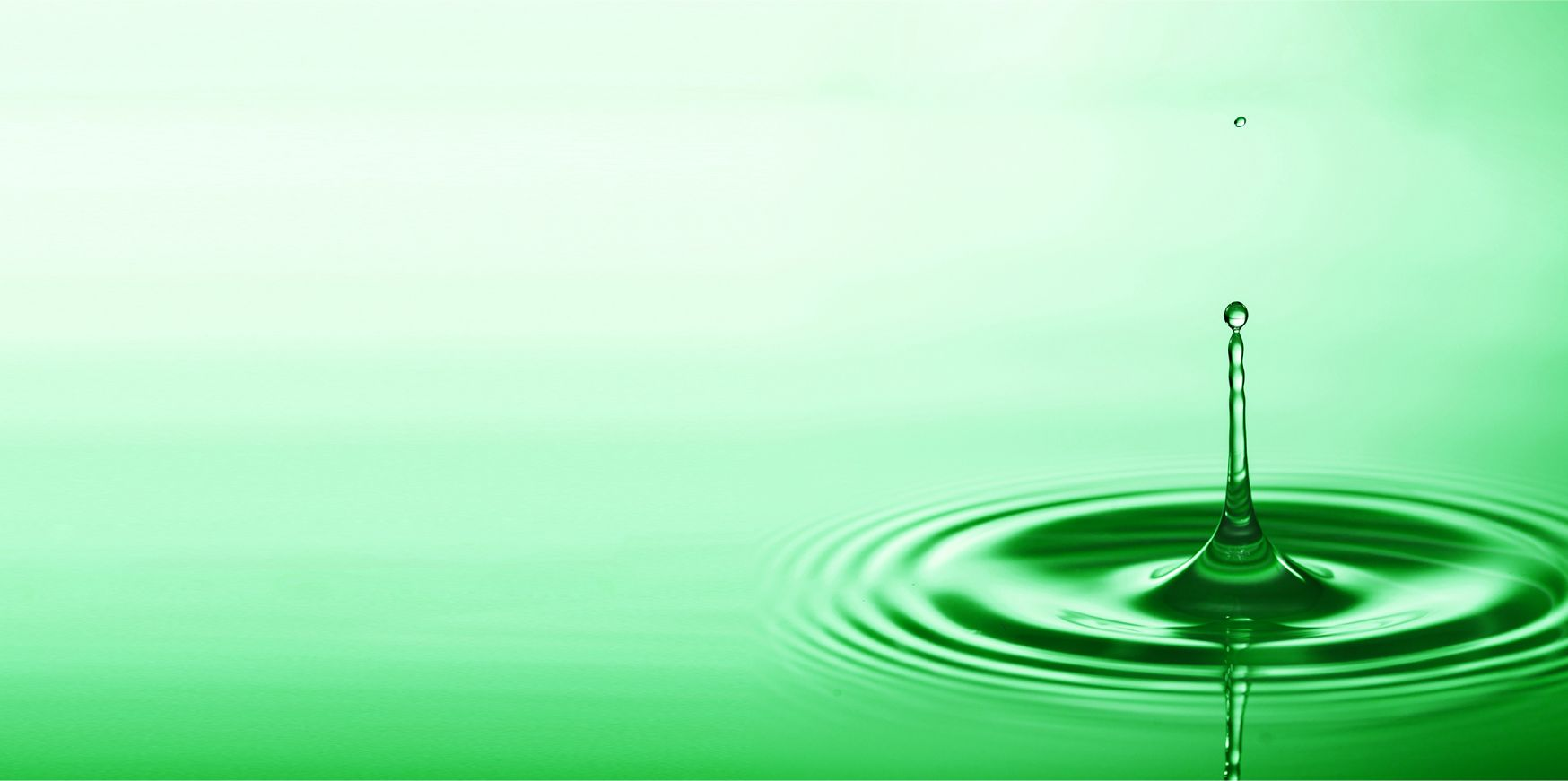 banner of Advocate for Aging Adults website - a drop of water